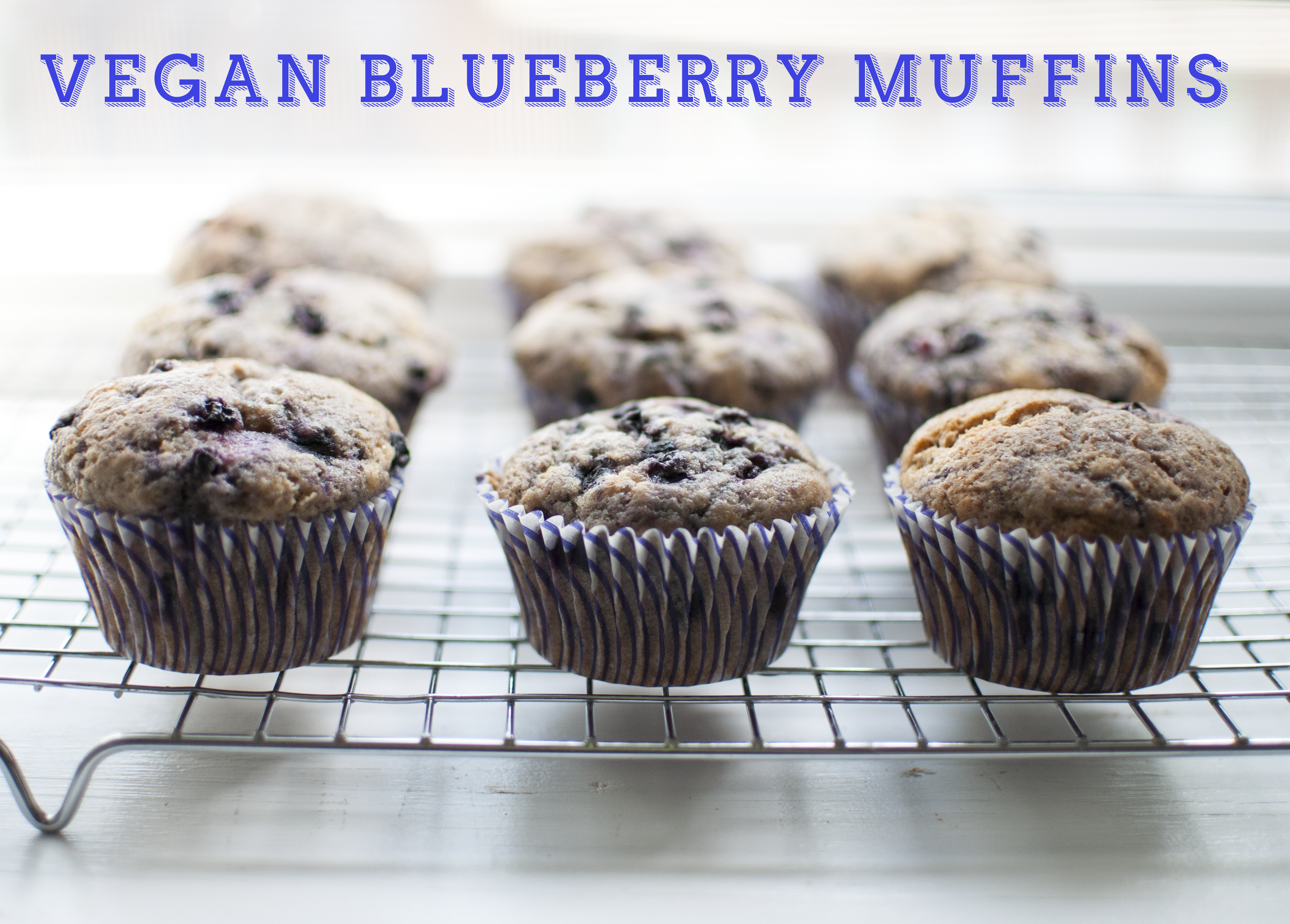 blueberrymuffins_cover